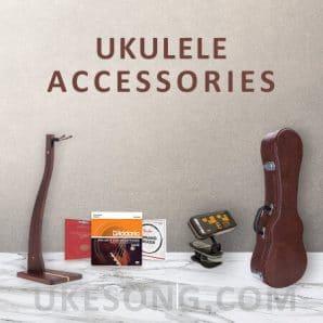 ukulele accessories